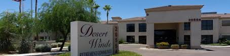 desert-winds-1